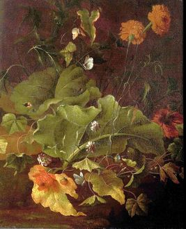 Dock Leaves and Other Flowers - James Sillett