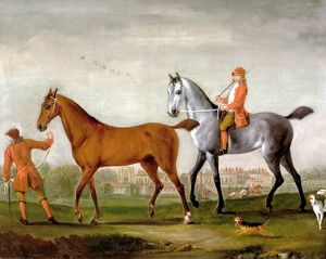 Two racehorses with grooms and hounds in the park at Newstead Abbey, by Peter Tillemans