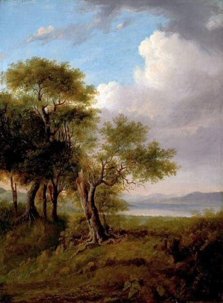 Artist: British (Norwich) School - Title: Landscape, Trees in the Foreground, Lake and Hills in the Distance - Date: N/A - Original Medium and Size: Oil on Canvas 61 x 45.7