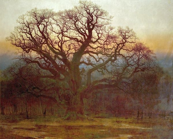 Artist: MacCallum, Andrew - Title: Major Oak, Sherwood Forest, Nottinghamshire - Date: 1882 - Original Medium and Size: Oil on Canvas 266.7 x 373.4
