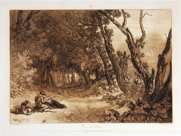Secluded woodland landscape. A woman has been shot with an arrow. A man with bow and quiver is kneeling beside her. Two dogs sit near them. Printed text Drawn & Etched by J.M.W. Turner Esq.r/Published Feby. 14 1812 by Mr Turner Queen Ann Street West