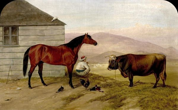 Artist: Luker, William (attributed to) - Title: The Turkish Pony 'Bobby', the Cock from Sebastopol, the Cow from the Valley of Baidar and the Pigeon () - Date: 1858 - Original Medium and Size: Oil on Canvas 50 x 75
