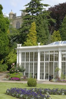 The Camellia House, Wollaton Hall