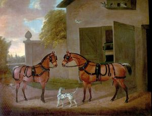 Carriages, Horses and Dogs