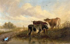 Cattle in Landscape, Evening
