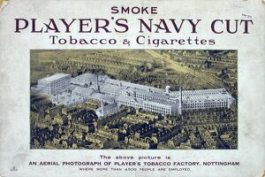Navy Cut Tobacco and Cigarettes, 1923=24