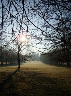 Wollaton Hall, winter morning